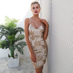 Elegant V neck sexy winter dress