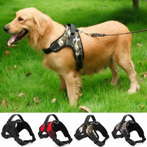 best heavy duty dog harness