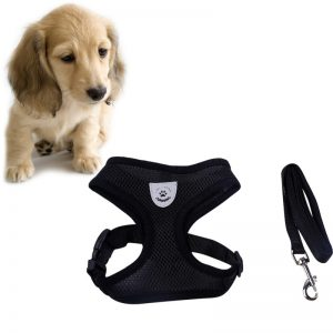 dog harness clothes