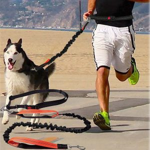 best hands free dog leash