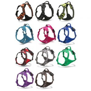 best buy dog harness
