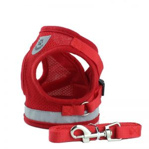 best harnesses for dogs