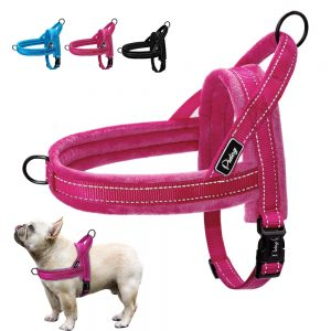 best vest harness for dogs