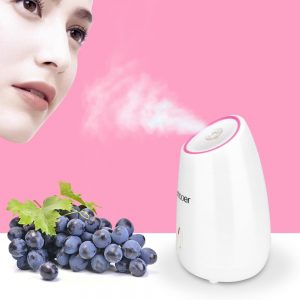 best face steamer