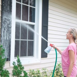 best handheld window cleaner