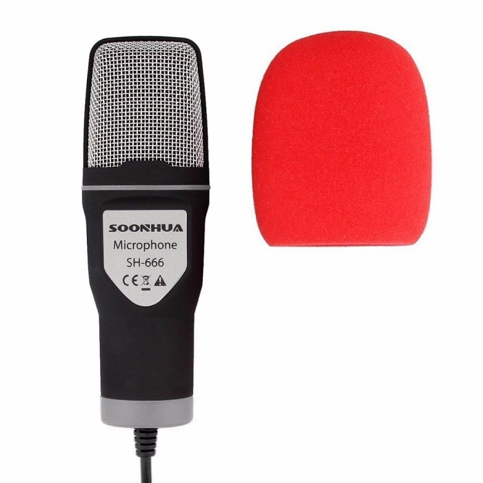 portable microphone for sale